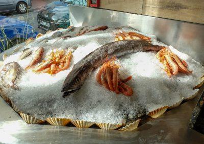 spiny-lobster-shoot-28_guetzli